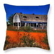 Hainesville Barn Color Throw Pillow