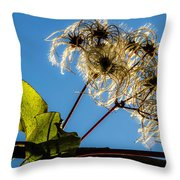 Hairy Beauty Throw Pillow