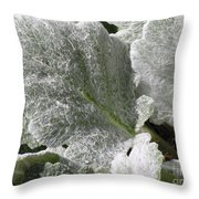 Hairy Leaf Throw Pillow