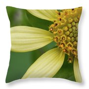 Hairy Leafcup #2 Throw Pillow