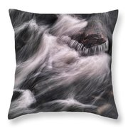 Hairy River II Throw Pillow