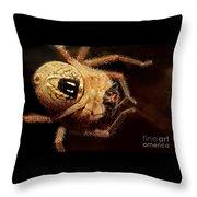 Hairy Spider Throw Pillow