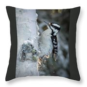 Hairy Woodpecker Female Throw Pillow