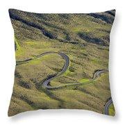 Haleakala Highway Throw Pillow