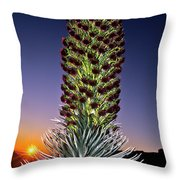 Haleakala National Park Silversword Sunrise Maui Hawaii Throw Pillow