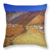 Haleakala Sliding Sands Volcano Trail Silverswords Throw Pillow