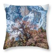 Half Dome Meadow Tree Winter Throw Pillow