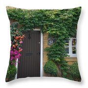 Half Penny Cottage Throw Pillow