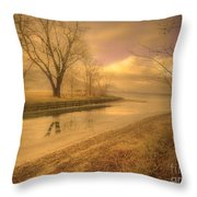 Half Reflections Throw Pillow