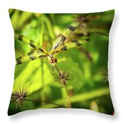 Halloween Pennant Dragonfly Throw Pillow