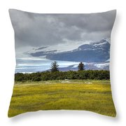 Hallo Glacier And A Bear Throw Pillow