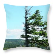Halved Pine Throw Pillow