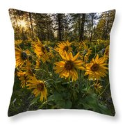 Hamblen Park Sunshine Throw Pillow