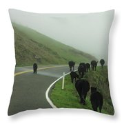 Hamburger Hill Throw Pillow