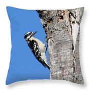Hammer Time Throw Pillow