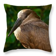 Hammerhead 2 Throw Pillow