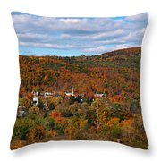 Hammondsport Panorama Throw Pillow