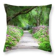 Hampton Park Path Throw Pillow
