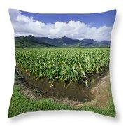 Hanalei Valley, Taro Fiel Throw Pillow