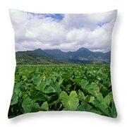Hanalei Valley Taro Field Throw Pillow