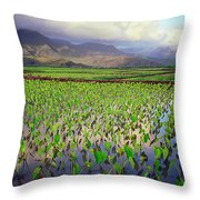 Hanalei Valley Taro Ponds Throw Pillow