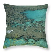Hanauma Bay Reef And Snorkelers Throw Pillow