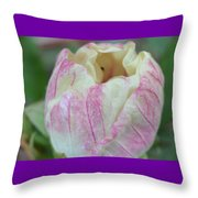 Hand-painted Sugar-frosted Throw Pillow