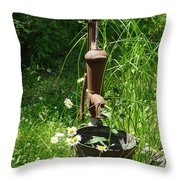 Hand Pump In The Spring Throw Pillow