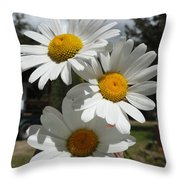 Handful Of Daisies Throw Pillow