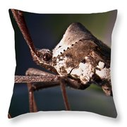 Handsome Bug Throw Pillow