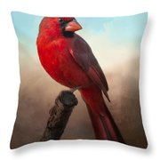 Handsome Cardinal Throw Pillow