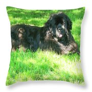 Handsome Guy Throw Pillow