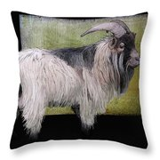 Handsome Pygmy Goat Throw Pillow