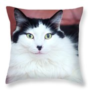 Handsome Tuxy Throw Pillow
