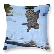 Hang Gliding Throw Pillow