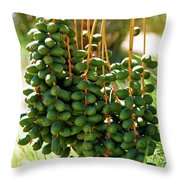 Hang Low Throw Pillow
