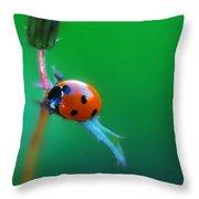 Hang Throw Pillow