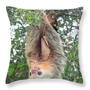 Hangin In Costa Rica Throw Pillow