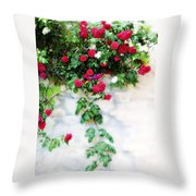 Hangin Roses Throw Pillow