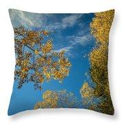 Hanging Aspen Throw Pillow
