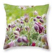 Hanging Blooms Throw Pillow