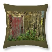 Hanging By A Hinge Throw Pillow