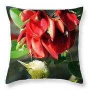 Hanging Japanese Throw Pillow