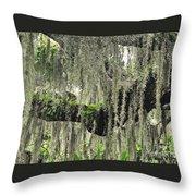 Hanging Moss Throw Pillow
