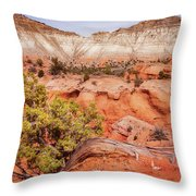 Hanging On The Cliff At Kodachrome Basin State Park Throw Pillow
