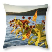 Hanging Out At The Lake Throw Pillow