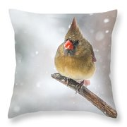Hanging Out In The Snow Throw Pillow