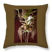 Hanging Roots Throw Pillow
