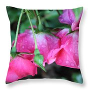 Hanging Roses Throw Pillow
