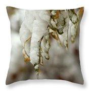 Hanging Snow Throw Pillow